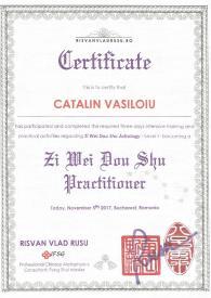 Diploma Zi Wei Dou Shu Catalin Vasiloiu